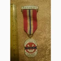 Медаль Åstvedt 1976 (Норвегія)