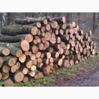 Продам дрова метровий кругляк - купити метрові колодки ціна Рожище