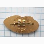 Значок «Речфлот Украины, корабль на подводных крыльях». Лот 2
