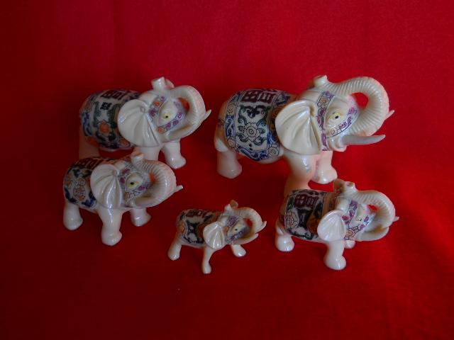 Фото 9. Индийские слоны