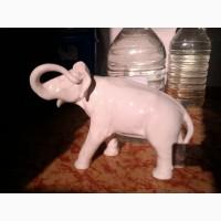 Слон белый Редкий
