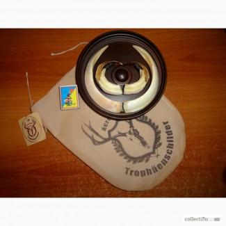 Охотничий трофей - клыки кабана СЕКАЧА, на медальоне