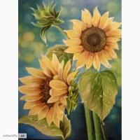 Картина Подсолнухи в утренней росе