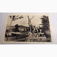 Поштова картка: Закарпаття. На гірських дорогох. 1955р. Лот 225