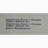 Листівка: Закарпаття.Турбаза «Дубовий гай» с. Кострина. Лот 226