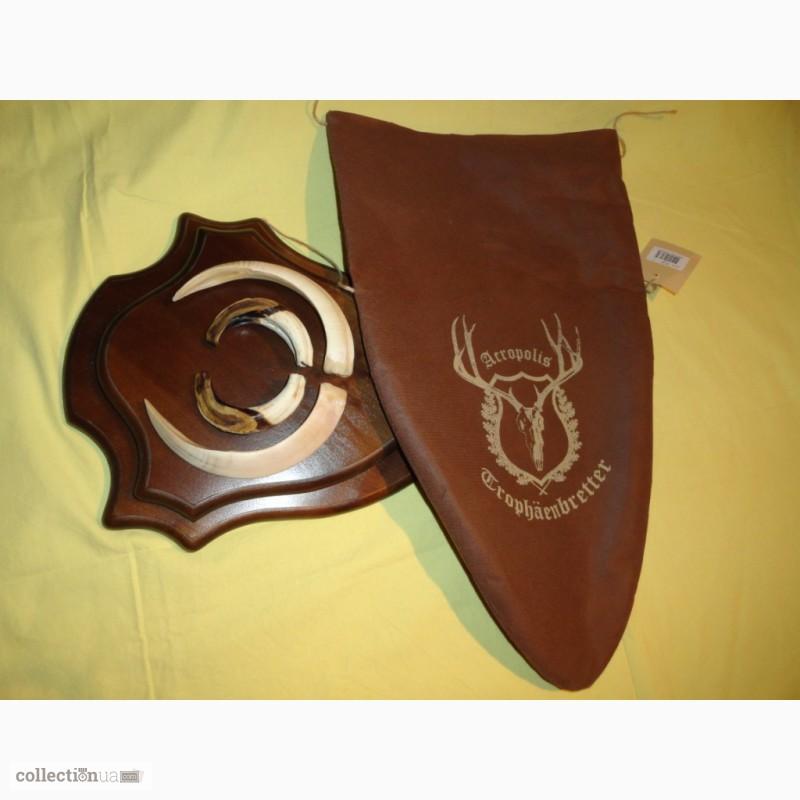 Фото 10. Охотничий трофей - клыки кабана СЕКАЧА, на 2-ном медальоне